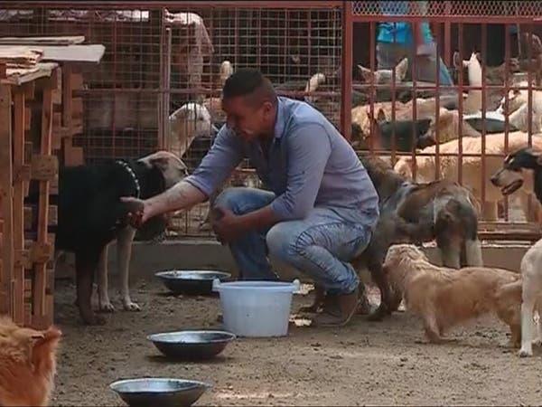 شاب مصري يعتني بأكثر من 100 كلب