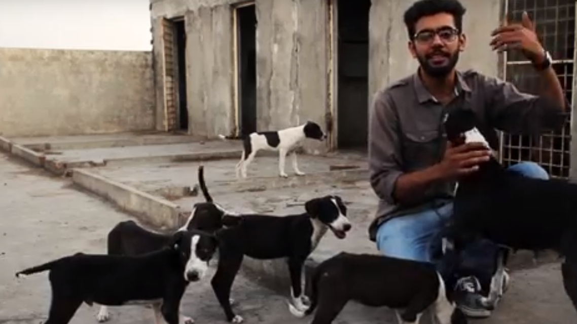The future aim of this shelter is to open a no kill animal shelter for all the stray animals in Pakistan. (Screengrab)