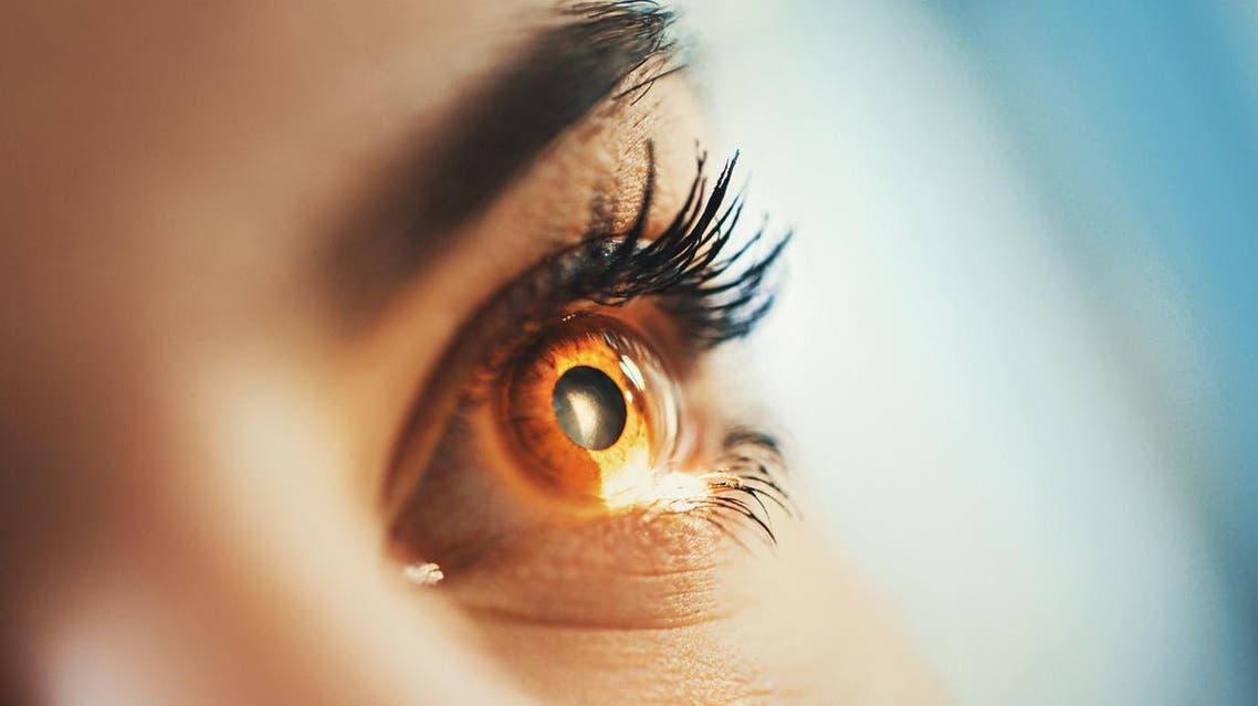حاسة البصر