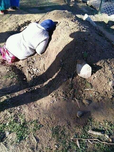 صورة الأم الجزائرية تحتضن قبر ابنها