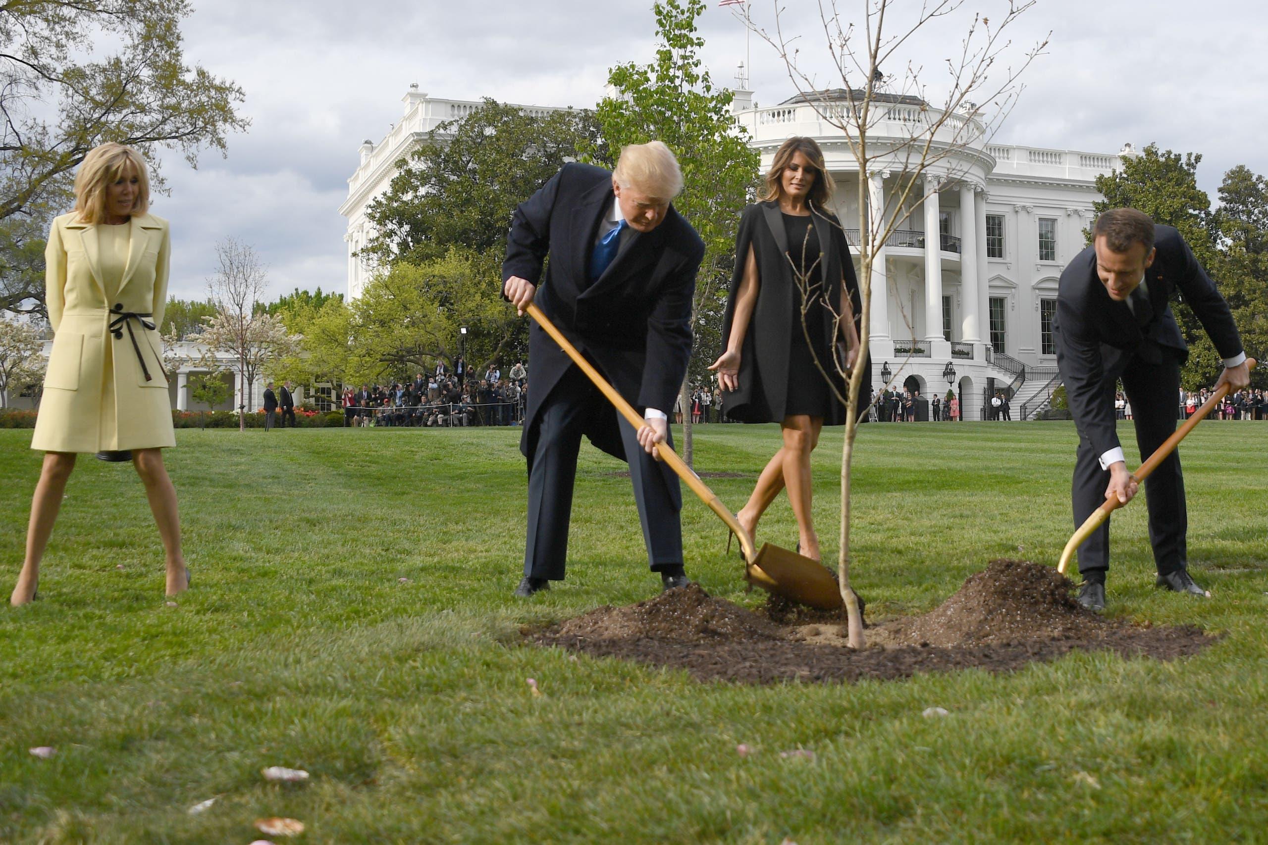زراعة الشجرة بحديقة البيت الأبيض