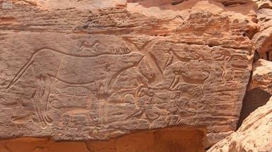 نقوش صخرية تكشف مسيرة حضارات إنسانية بالمملكة قبل التاريخ
