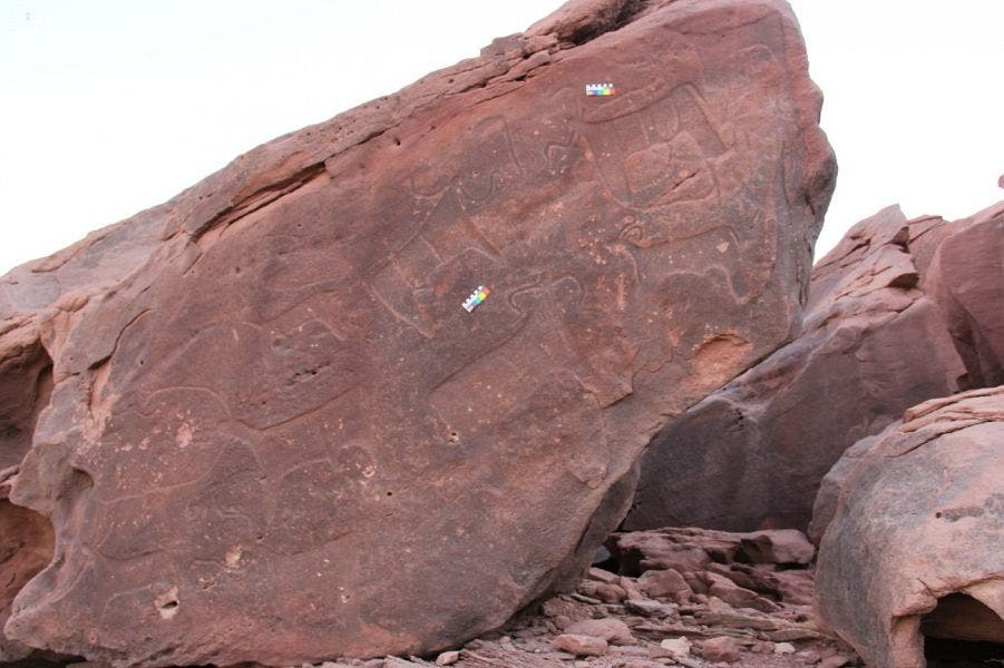rock inscriptions saudi arabia (SPA)