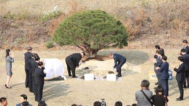 بالصور.. زعيما الكوريتين يزرعان شجرة سلام عند الحدود