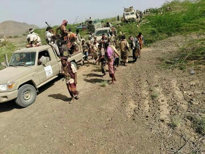 قوات الشرعية اليمنية في مفرق الوازعية