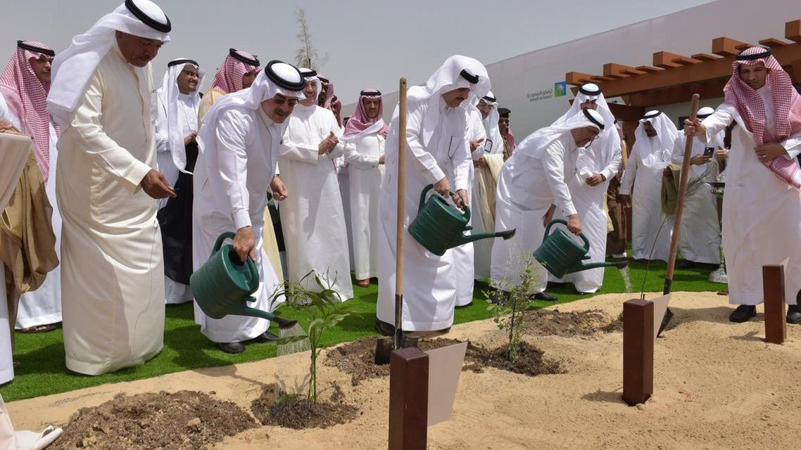 Saudi Aramco to plant one million trees in eastern Saudi Arabia