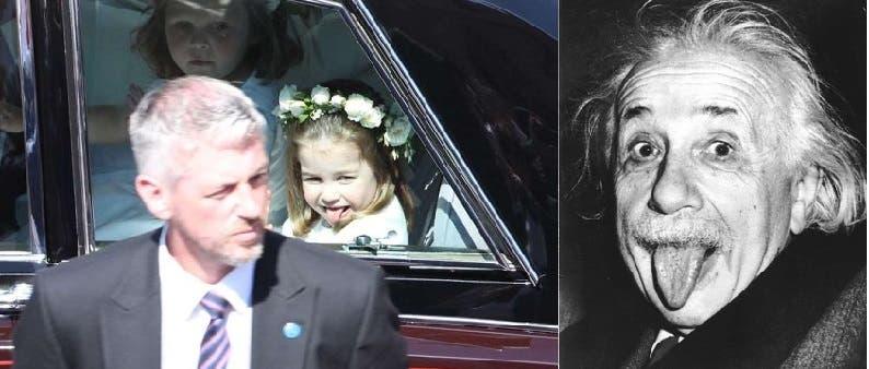 لسان أينشتاين، ولسان الأميرة الصغيرة