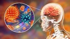 Nipah virus: What is this brain-damaging outbreak sweeping India?