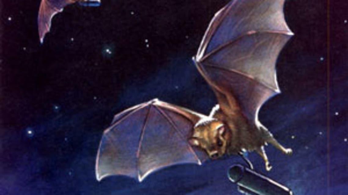 رسم تخيلي للخفافيش الإنتحارية