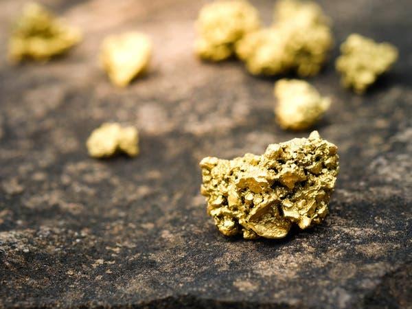 الذهب مستقر مع تقلص تأثير توقعات رفع الفائدة الأميركية