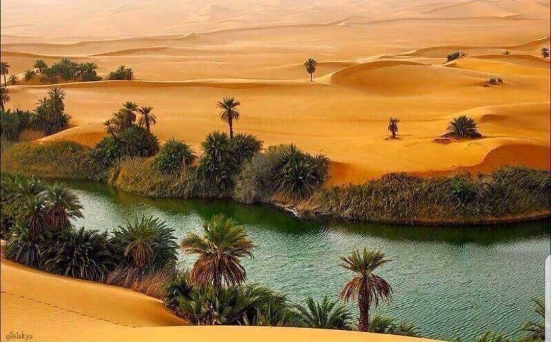 oasis dunes