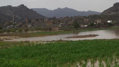 اليمن.. أول قرية غرب صنعاء تطرد الحوثيين