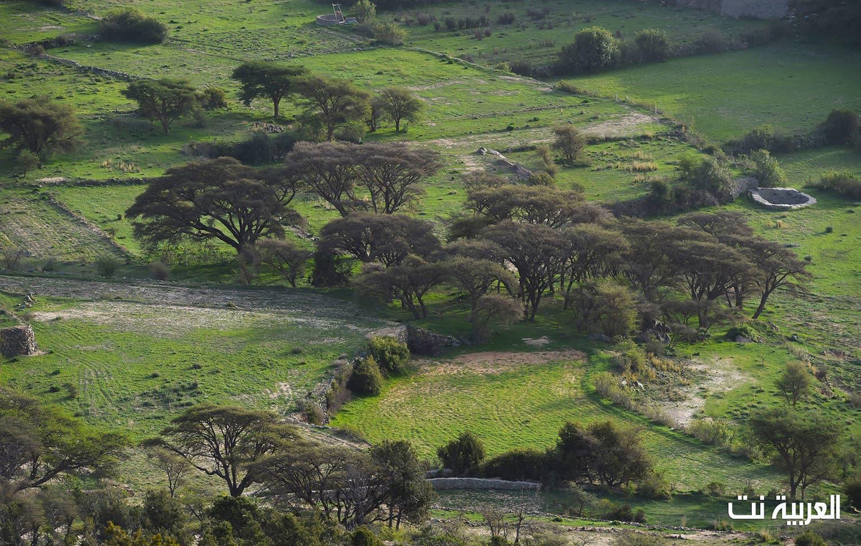 صور تأسر القلب جبال النماص السعودية تعانق السحاب