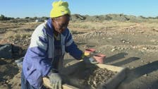 South Africa's diamond miners emerge from the shadows