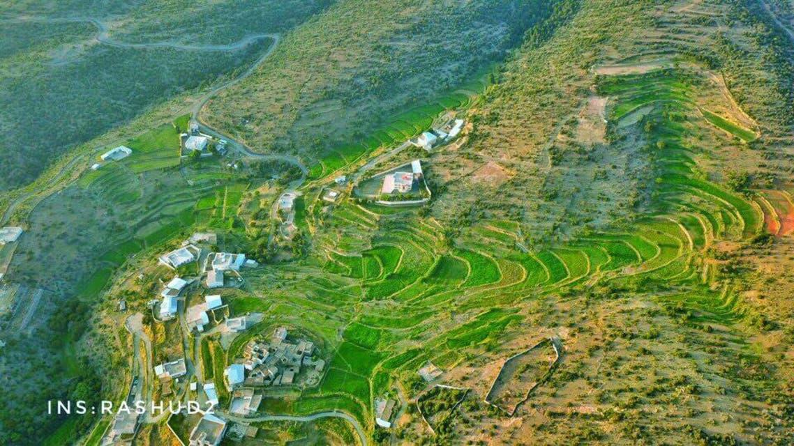 saudi village greenery. (Supplied)