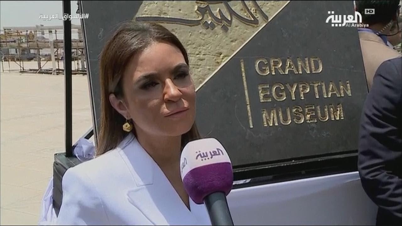 egypt minister5
