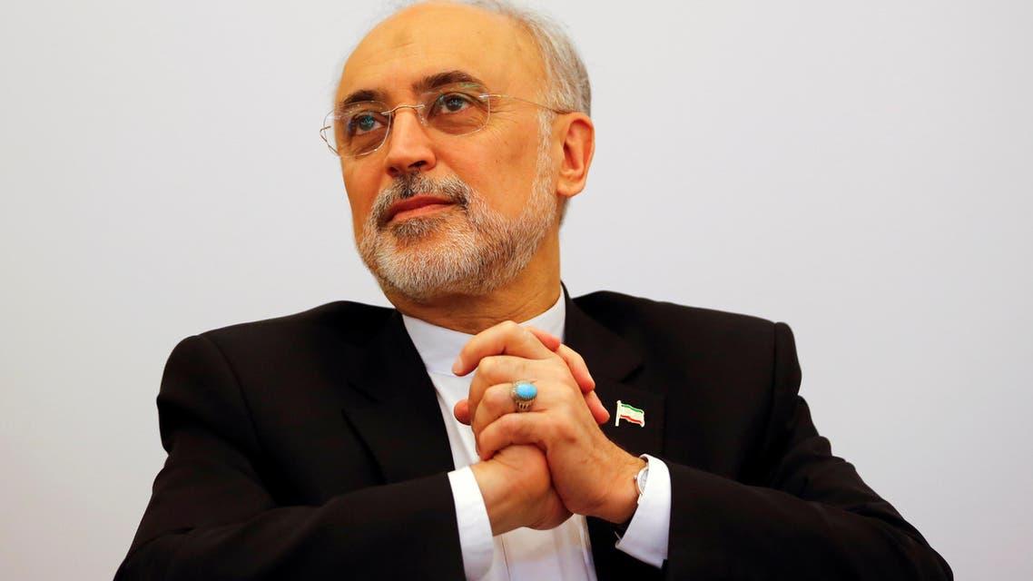ali akbar salehi Iran nuclear (Reuters)