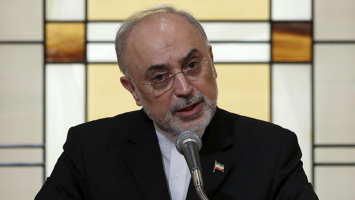 ali akbar salehi Iran nuclear 2(Reuters)