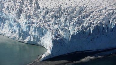 علماء يزرعون خضراوات ورقية في القطب الجنوبي