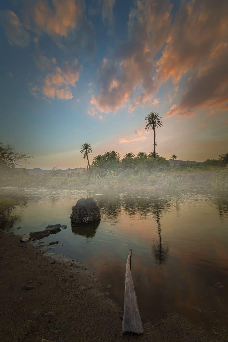 Exploring Saudi Arabia: How Asir's Bisha became the 'town of palm dates'