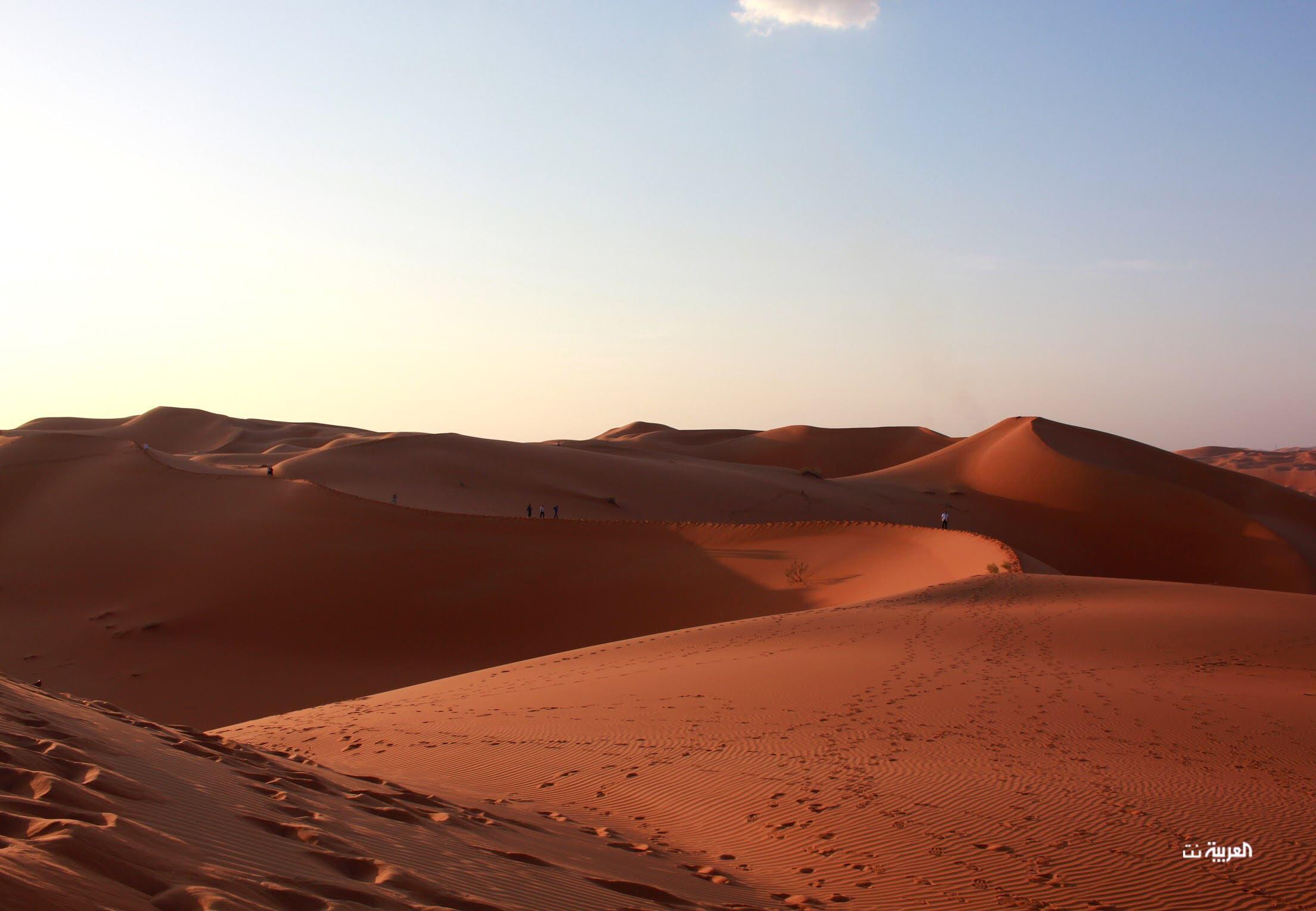 شيبة في صحراء الربع الخالي