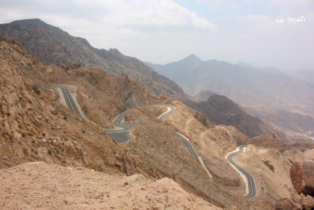 Saudi Assir
