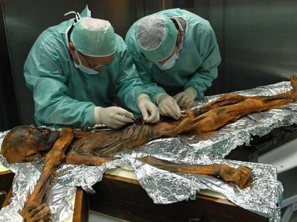 لأول مرة.. هذا ما كان يأكله رجل الثلج قبل 5000 عام