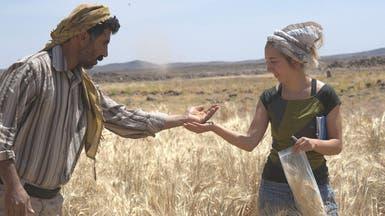 العثور على أقدم خبز في العالم في موقع أثري بالأردن