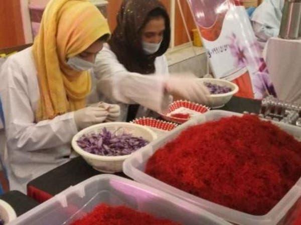 وزارت زراعت افغانستان: قاچاق زعفران هنوز هم ادامه دارد