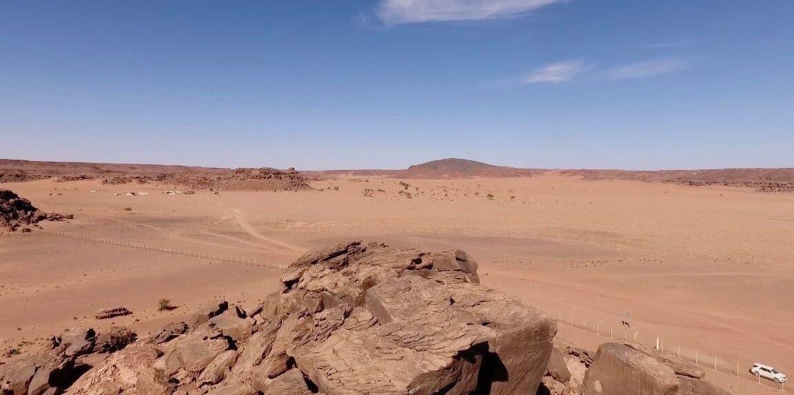 Saudi Lion Hail 7 (Supplied)