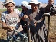 الثعابين تهاجم قرية مصرية جديدة وتخلف قتيلين و5 مصابين