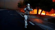 حرائق الغابات تقتل 50 شخصاً في يومين باليونان