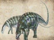 اكتشاف علمي يعيد كتابة تاريخ الديناصورات من جديد