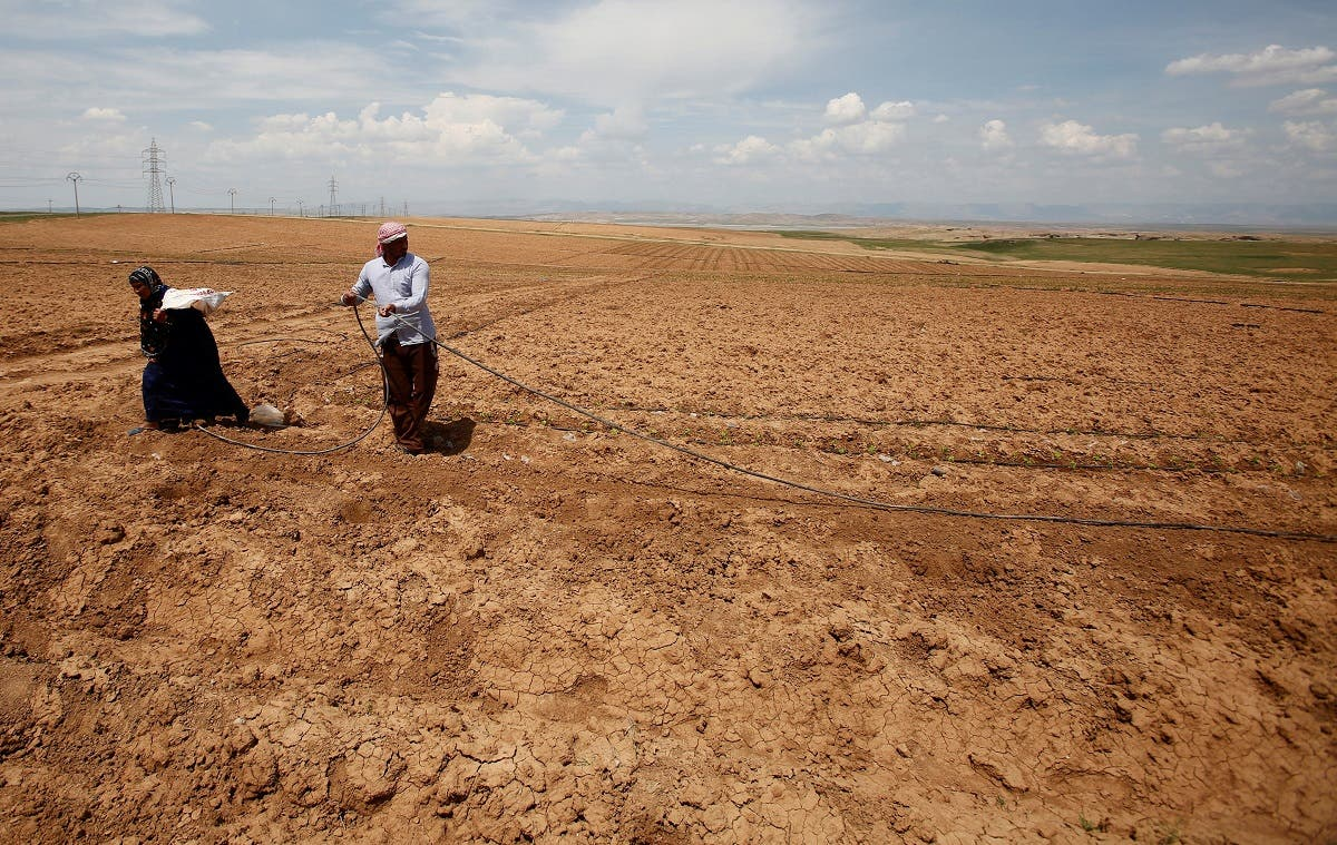 Iraqi farmers work in their fields north of Mosul. (Reuters)
