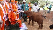 Indian NGO to the rescue as poachers call shots in Kenya's wildlife parks