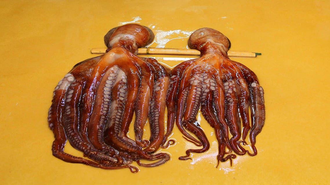 Octopus. (AP)