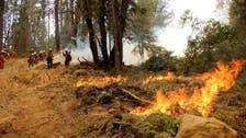 كاليفورنيا.. تقدم بعمليات إخماد الحرائق رغم الجو السيئ