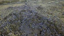 WATCH: Spectacular drone footage from Mount Arafat during Hajj