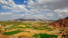 IN PICTURES: Beautiful panoramic views of Saudi Arabia's Najran oasis
