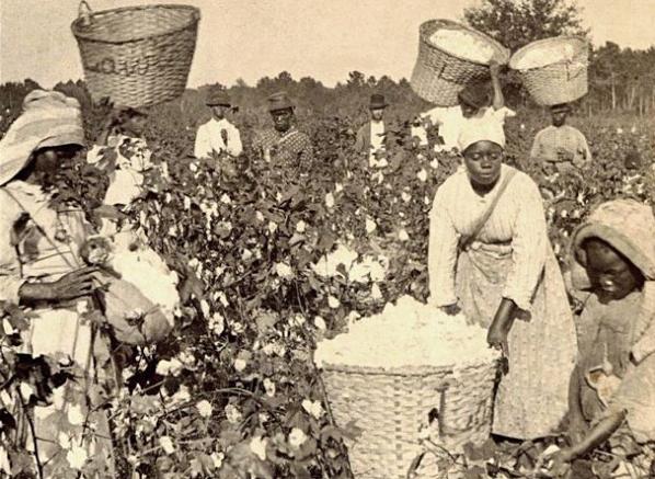 صورة يعود تاريخها لمطلع ستينيات القرن التاسع عشر لعدد من العبيد الأفارقة العاملين بحقول القطن على أراضي الولايات المتحدة الأميركية