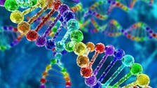 Genome sequencing to be used in Dubai to track food poisoning