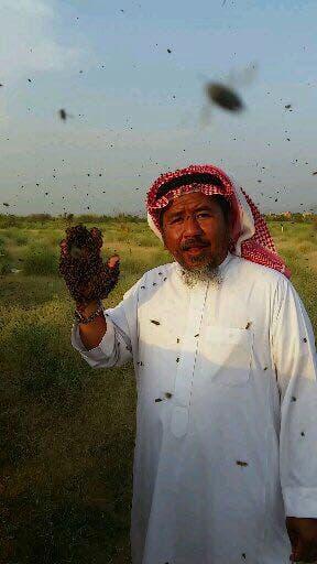 Saudi bee fattani 4 (Supplied)