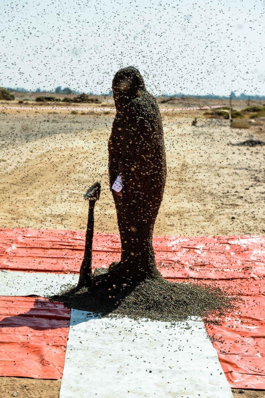 Saudi bee fattani 2 (Supplied)