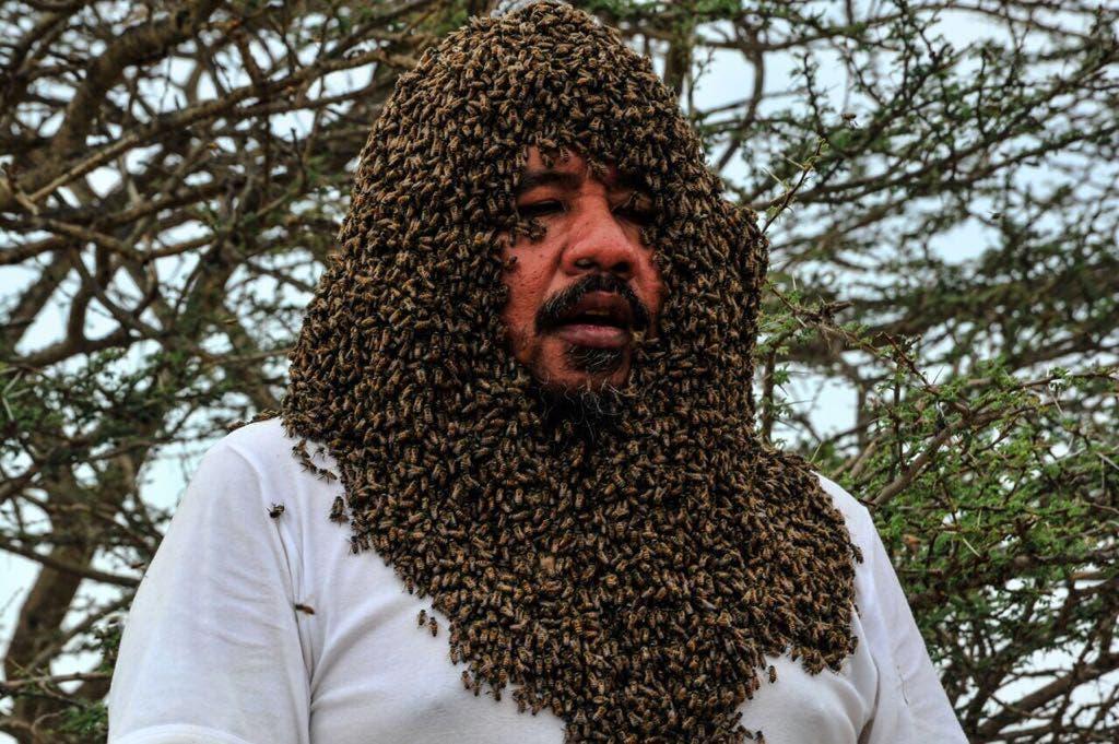 Saudi bee fattani 7 (Supplied)