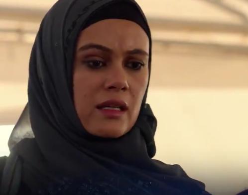 Dina Shihabi. (Screengrab)