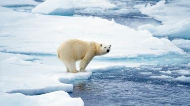 كندا تراقب القطب الشمالي بطائرات من دون طيار!