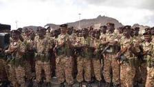 Military reinforcement reach Yemen's Hodeidah as offensive looms
