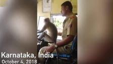 بھارت میں بندر سے بس چلوانے کا واقعہ عوام و خواص کی توجہ کا مرکز