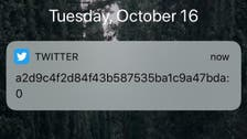 Twitter baffles users after sending notifications with random characters