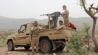 قوات الشرعية في جبهة تعز (أرشيفية)